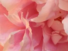 Heaven's Breath by Karen Watson