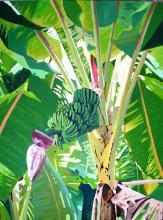 Banana Tree  by Ricardo Maldonado