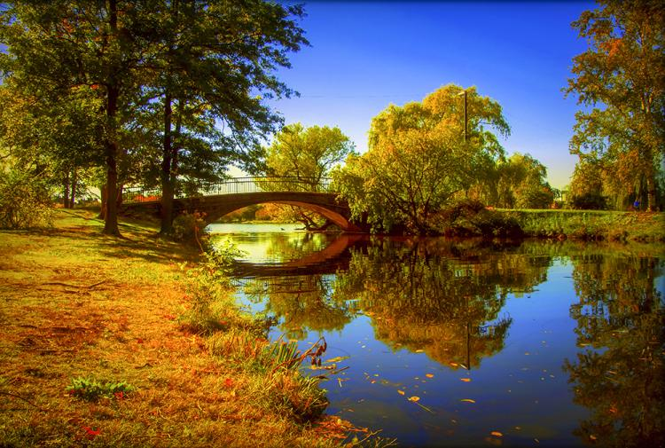 Fall on the Charles by Shona Keir