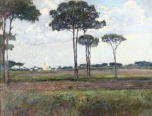 Giuseppe Sacheri (1863 - 1950), Pini e nuvole
