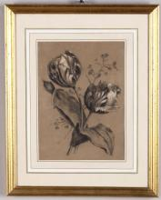 Scuola del XIX secolo, Studio di botanica