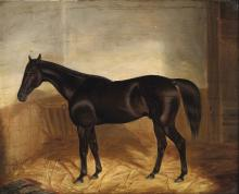John Frederick Herring (1795-1865), Horse in a stable