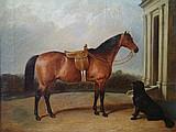 COLE, James William 1860 O/C Horse Portrait & Dog