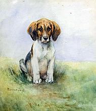 Florence Jay (fl. 1905-1920) - Watercolour - Study