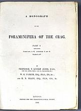 A Monograph of the Foraminifera of the Crag by