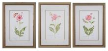 Trio of Botanical Prints (20th Century)