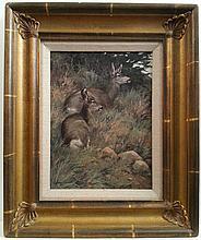Lanford Monroe Mule Deer