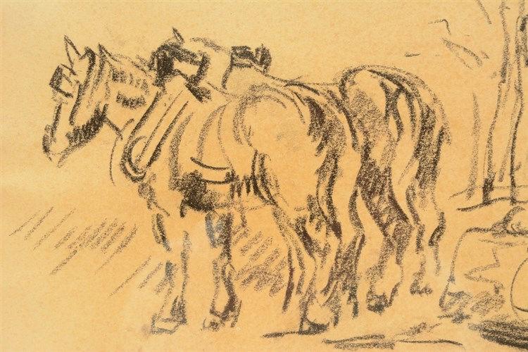 Malfait H., horses,charcoal, 25,5 x 34,5 cm
