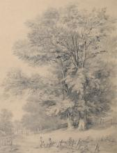 McKenzie M.J., a forest view at Berley (Kent), pencil drawing, dated 1843, info based on the reverse of the work, 34 x 45 cm