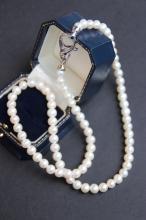 Collier de perles d' eau douce , fermoir en argent