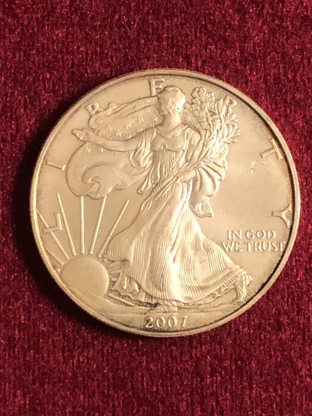 2007 1 oz fine silver walking liberty coin