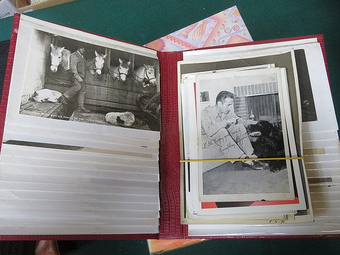 THREE ALBUMS OF VARIOUS POSTCARDS INCLUDING PORT SUNLIGHT AND WIRRAL, FOREI