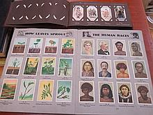 THREE ALBUMS OF VARIOUS CIGARETTE CARDS.