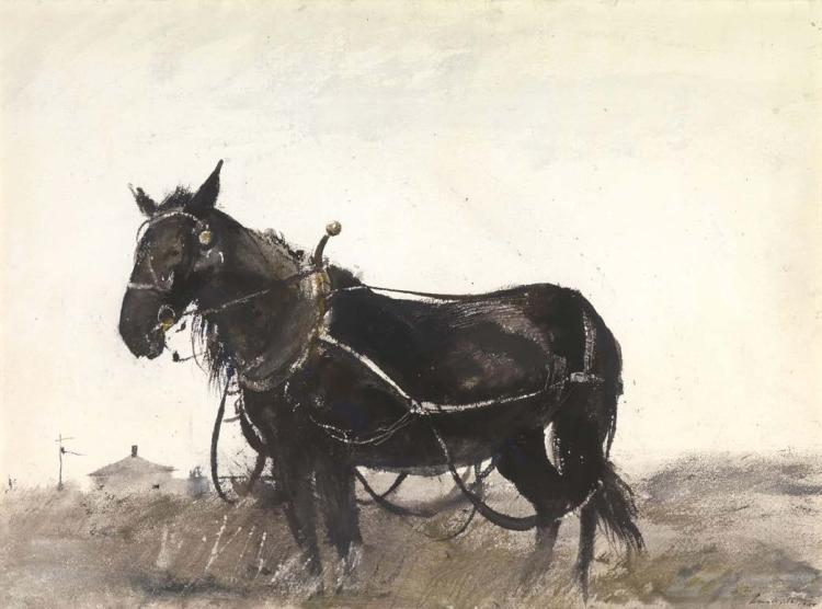 Farm Horse by Andrew Wyeth