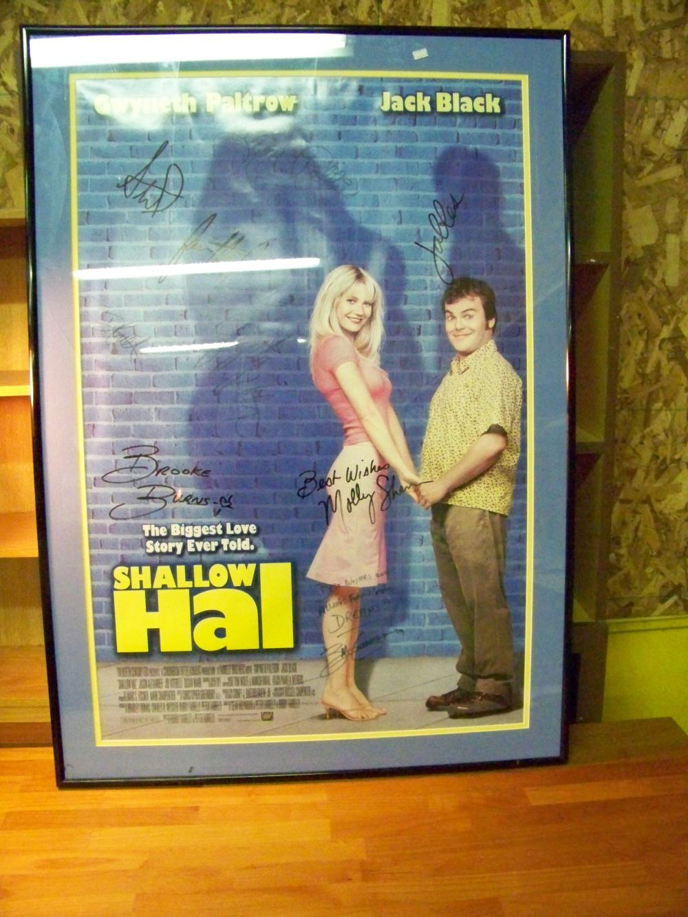 Large Movie Poster Signed By Cast Shallow Hal