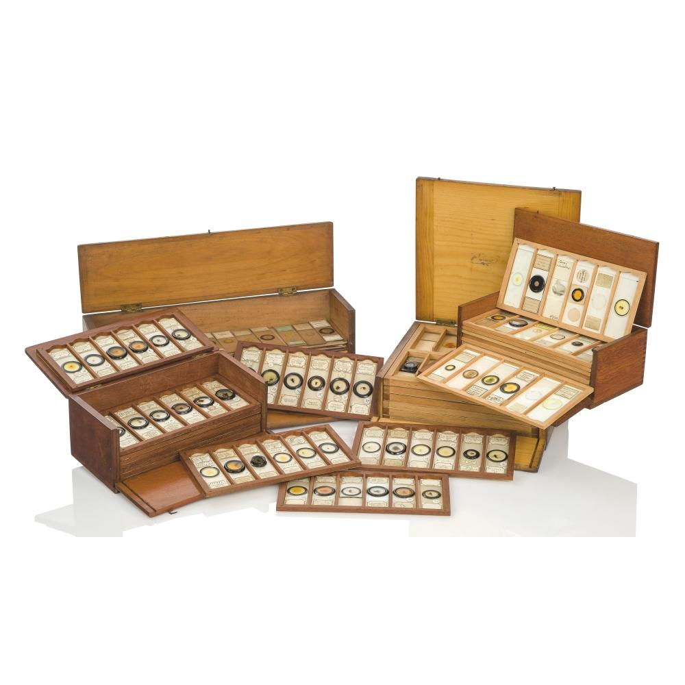 MICROSCOPE SLIDES FROM THE PERSONAL COLLECTION OF FRED ENOCK (1845-1916)