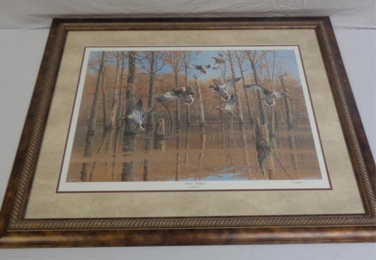 Framed Print Of Ducks Flying