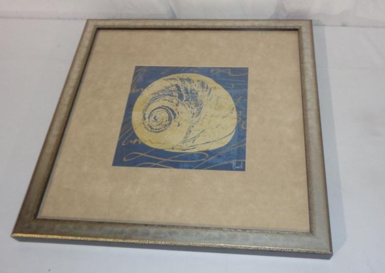 Framed Picture Of Shell