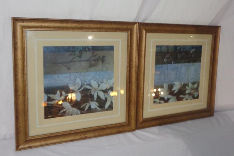 Pair Of Framed Flower Prints