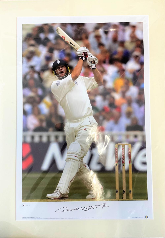 Cricket Andrew Freddie Flintoff signed 26x19 inch limited edition big blue print PC/500. Good