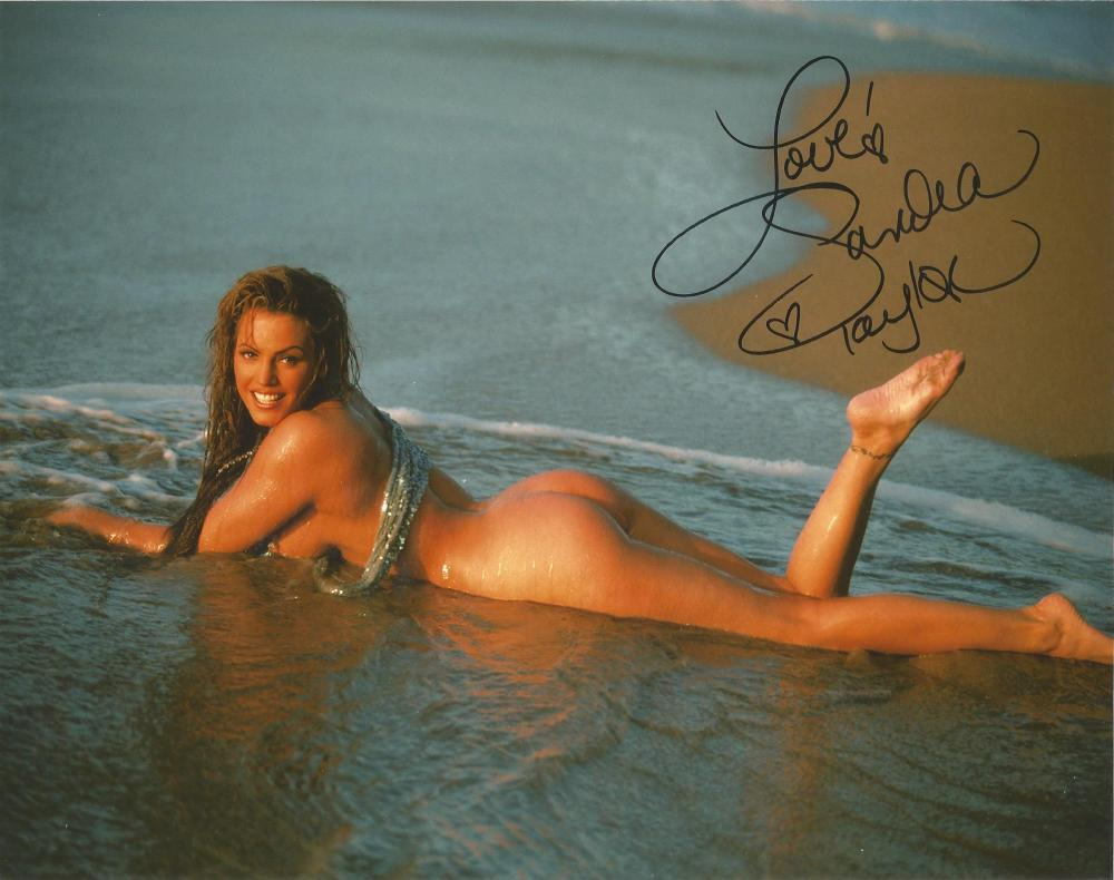Sandra Taylor Penthouse Pet & actress hand signed 10x8 photo. This beautiful hand- signed photo
