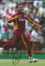 Sunil Narine 12x8 signed colour photo. Trinidadian cricketer who plays for the West Indies in all