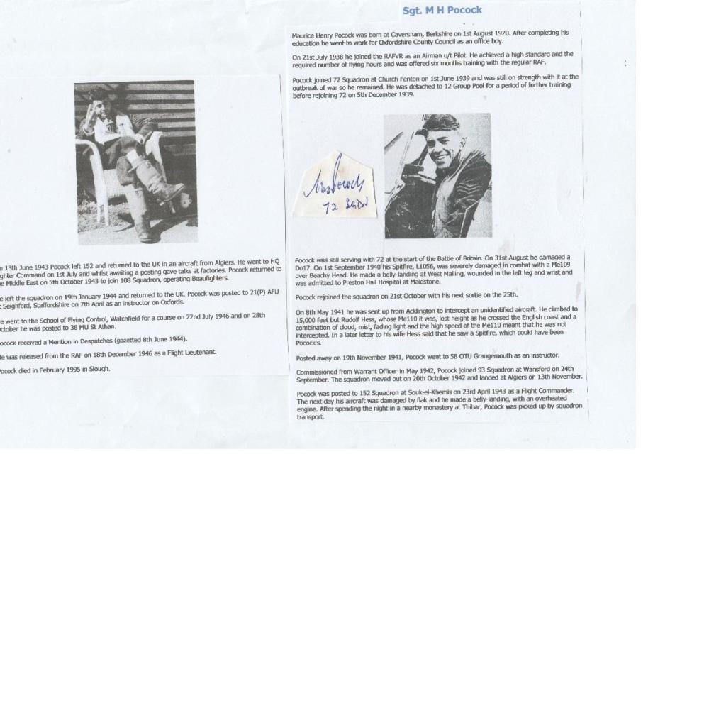 WW2 Battle of Britain Signature of SERGEANT (later) FLIGHT L