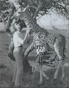 Susan Hampshire   - Living Free   - 10X8  Photo