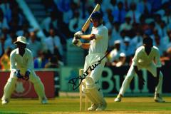 David Gower Cricketer Signed 12 X 8 high quality p