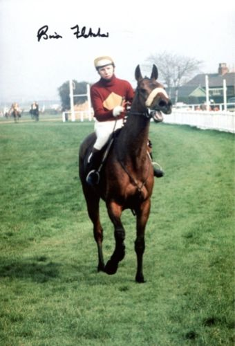 RED RUM: 8x12 inch photo of Red Rumsigned by her j