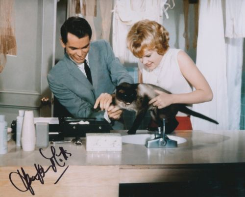 HAYLEY MILLS: 8x10 inch moviescene photo signed by