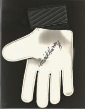 Signed Goalkeeping Glove David Harvey, A Black & Green Umbro Glove Superbly Signed Using A Black