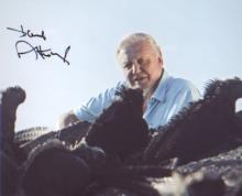 Sir David Attenborough signed 10x8 nature picture. Excellent. Good Condition. All signed items