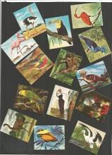 Assortment of little cards.  Includes Football, bi