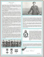 Warrant Officer Derek Tulloch signed pilot profile
