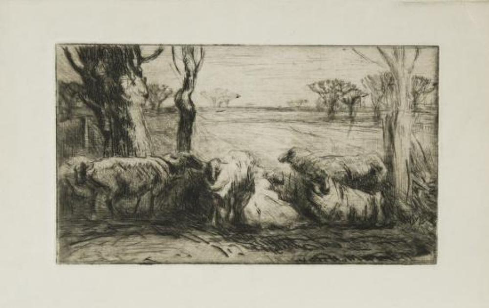 Harry Becker (British, 1865-1928) Sheep studies etchings, two states of the same subject, and three others,