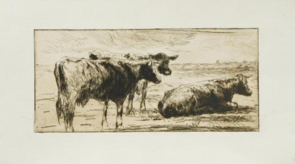 Harry Becker (British, 1865-1928) Cattle at rest (3); Cow being milked etchings, three states of the same subject, two on paper part...