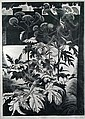 John Farleigh (1900-1965) Hemlock wood engraving 1929  signed, titled and numbered 9/50 below in pencil 36.5 x 26cm (i..., John Farleigh, Click for value