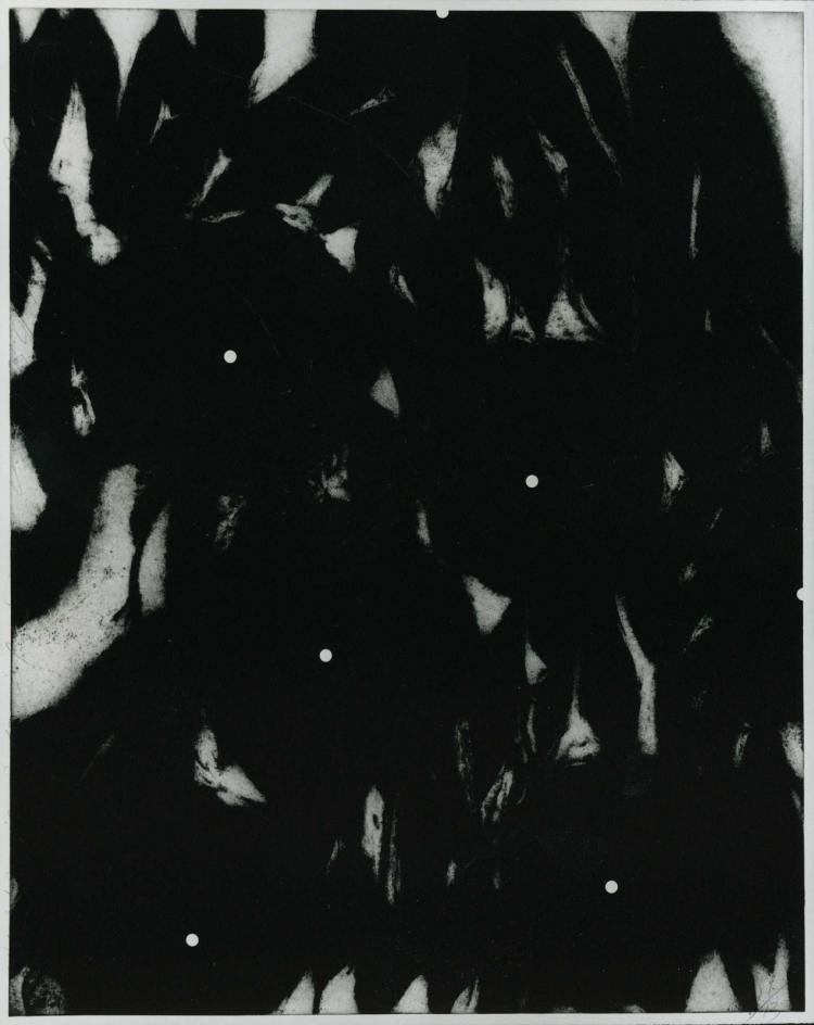 Donald Sultan, Morning Glories Jan 31 1990, 1990 (Edition of 60)
