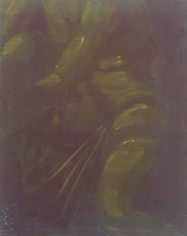 Jan Van Imschoot, La belle pisseuse robuste pour les veillards entre nous, 1999