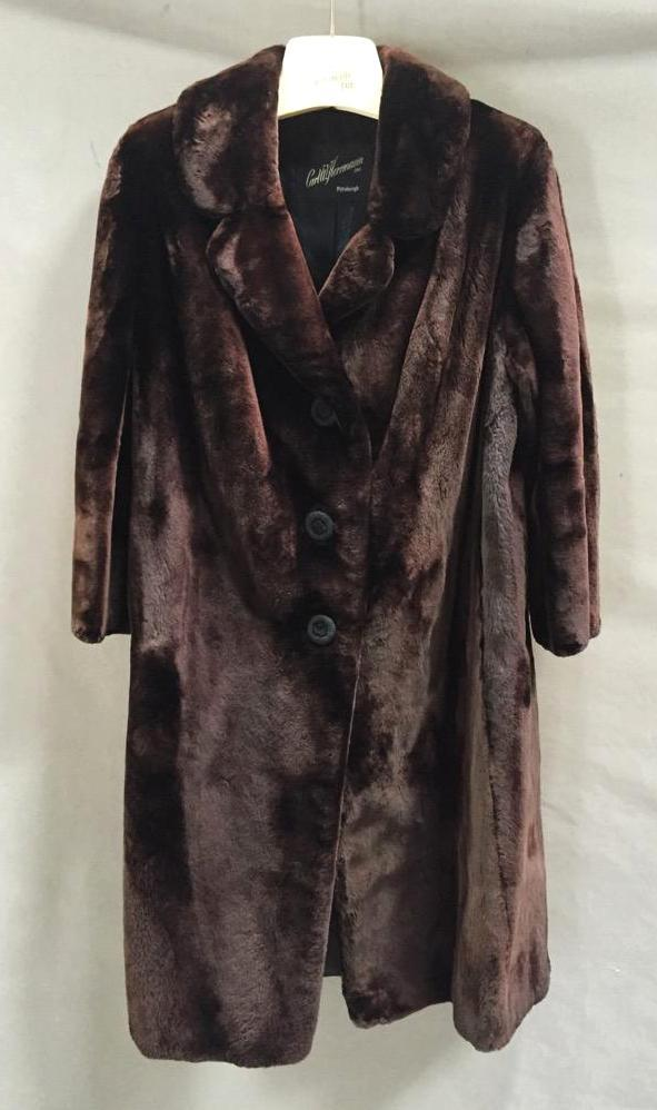 Vintage Beaver Fur 4