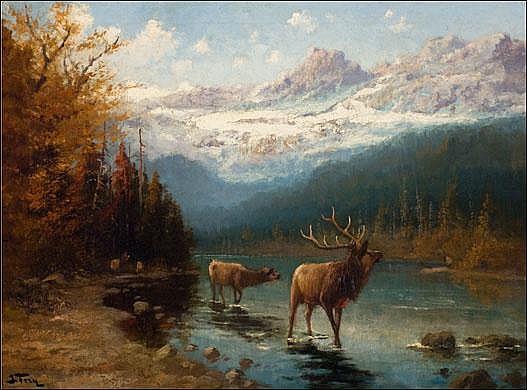 Fery, John:  Glacier Elk  Signed l.l. O/C  24x32