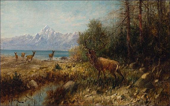 Fery, John: Elk on Jackson Lake, Wyoming Signed