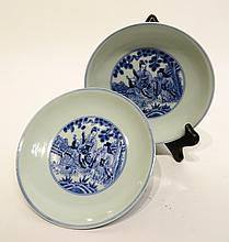 PAIR OF CHINESE DAO GUANG BLUE AND WHITE PLATES