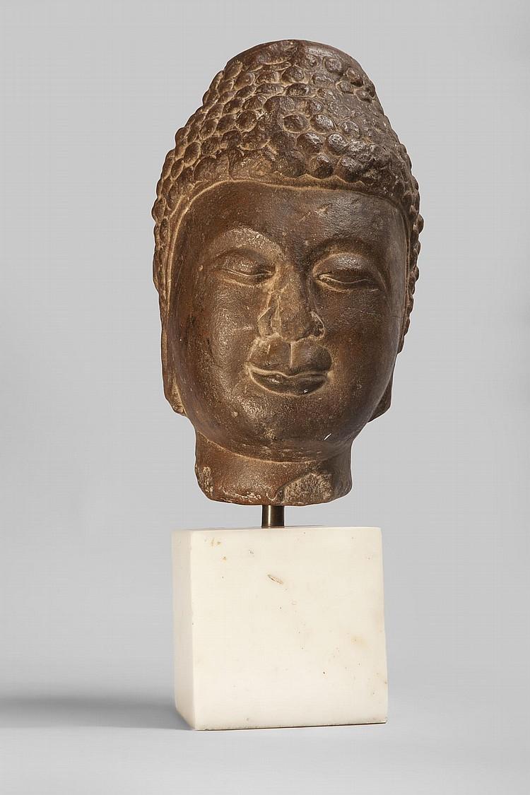 Tête de Buddha coiffée de larges bouclettes surmontée de la protubérance crânienne ushnisha symbole de sa connaissance.
