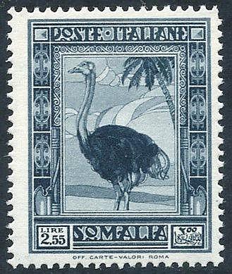 1935-38 Pictorial Series 2L.55 Ostrich P.14 UM, Sass 1000€+