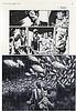 FEGREDO DUNCAN   ANGLAIS NÉ EN 1964, Duncan Fegredo, Click for value