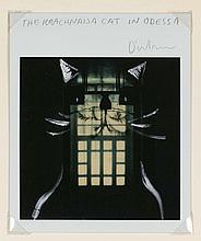 ERIK DIETMAN (1937-2002) The Krachnaisa Cat in Odessa, 1985. Polaroid et d