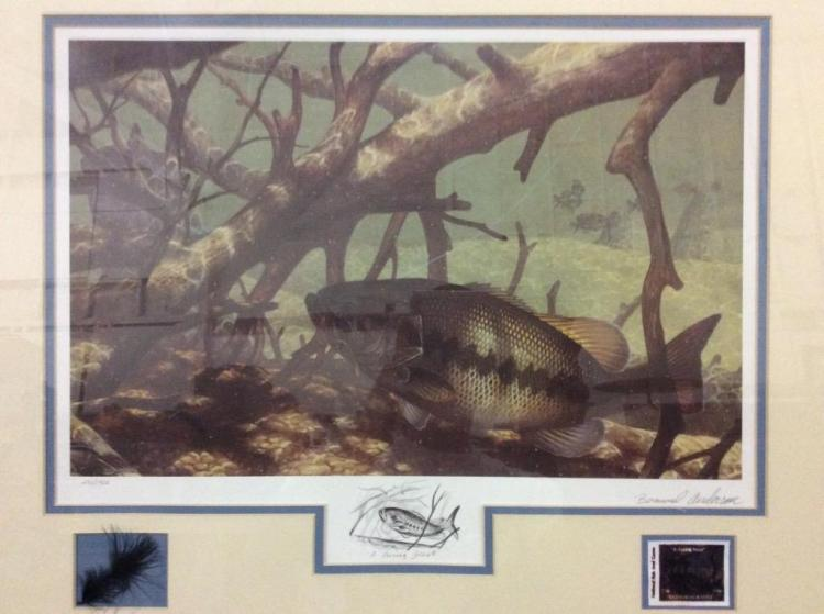 Wildlife Trout print & shadowbox limited edition 1450/1500 hand signed by Bernard Anderson