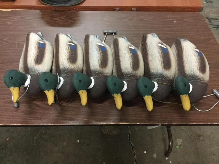 lot of 6 duck decoys - life size